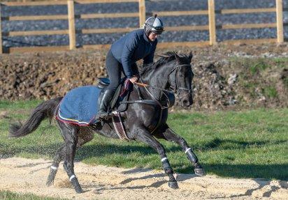 Rupert Gibson Photography 2018 - Equestrian -4