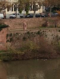 Der Heidelberger Liebesstein ist auch von der anderen Uferseite zu sehen. (Foto: Dominik Waibel)