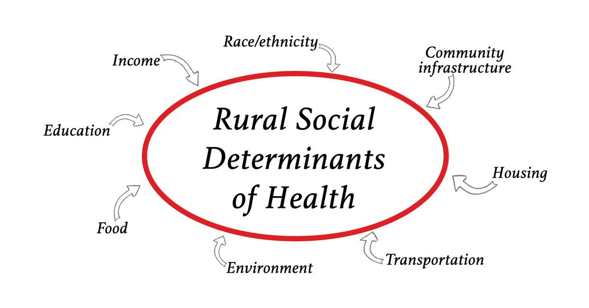 Social Determinants of Health: Transforming the Buzz