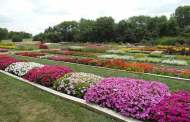 K-State Olathe Horticulture Center Field Day is July 25