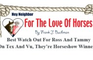 For The Love Of Horses: Watch Out For Ross And Tammy On Tex And Vu, They're Horseshow Winners