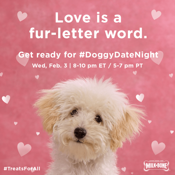 Pups and Kisses! You're invited to a #DoggyDateNight Twitter Party on Feb. 3