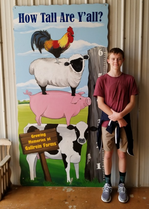 Rural Mom Travels: Shelbyville Kentucky