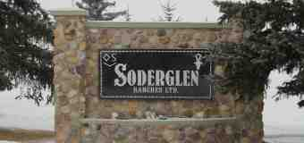 The rich history of Soderglen Ranch and its bull sale