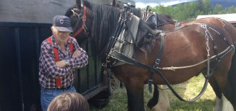 Glenn Kerr: Pulling more than his weight for the draft horse community