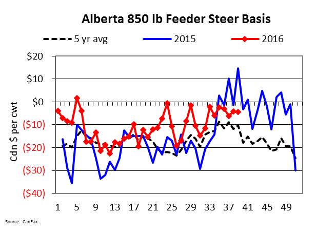AB 850lb feeder steer basis 2016