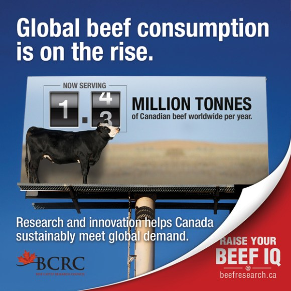 BCRC_2017_FactoidSeries_BeefConsumption_600x600_web