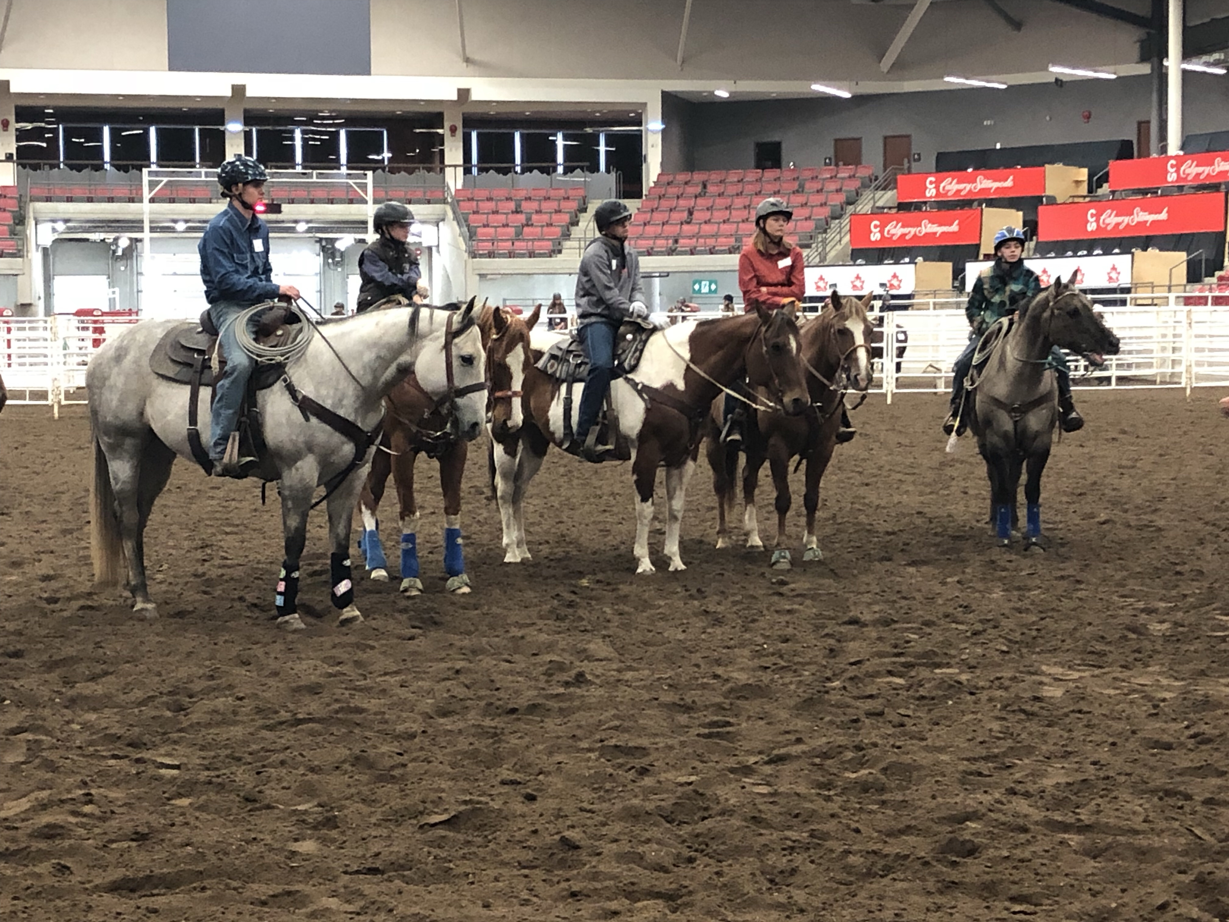 Rodeo Stars Of Tomorrow Gather Calgary Stampede 4 H Event