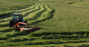 BCRC: Stored Forages: Hay, Greenfeed and Silage