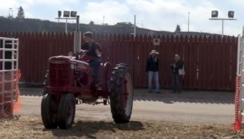 Vintage tractor enthusiasts pull and swap stories at Calgary