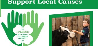 Learn To Do By Doing: 4-Hers get creative in marketing livestock projects amid pandemic