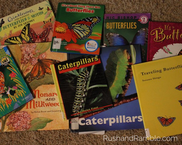 Butterfly Books | Milkweed, Monarchs and Masterpieces: The Tale of a Preschooler and His Butterfly Garden