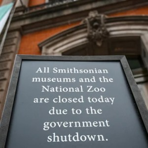 What to Make of the Temporary Shutdown Pause