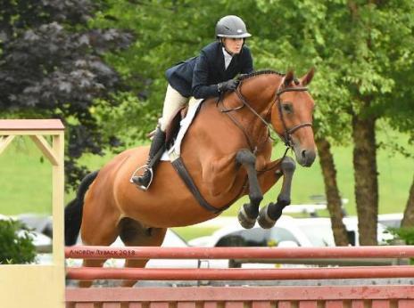 marianne riding horse