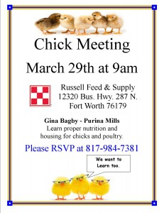 chick meeting
