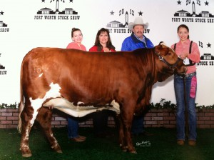 Heidi Phillips, Jr. Heifer Champion at the Ft. Worth Stock Show