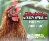 chicken meeting