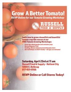 Tomato Growing Workshop