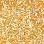 Cracked Yellow Corn