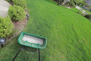 Spring Pre-Emergent Weed Control