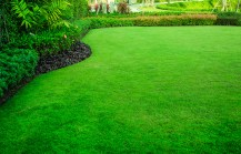 Check out Russell Feed Year-Round Lawn Care Guide, and take the guesswork out of lawn care.