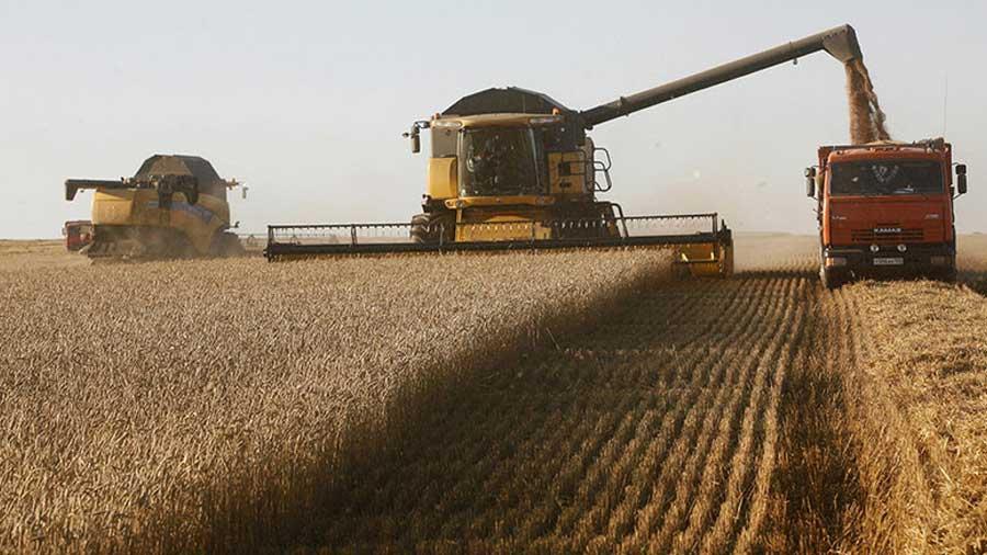 russia-wheat