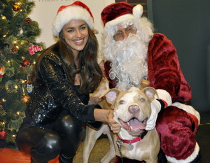Irina Shayk and Santa with a dog at shelter
