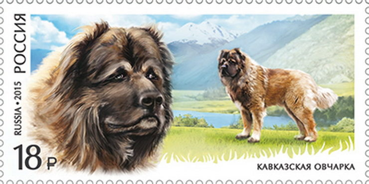 russian mountain dog stamp