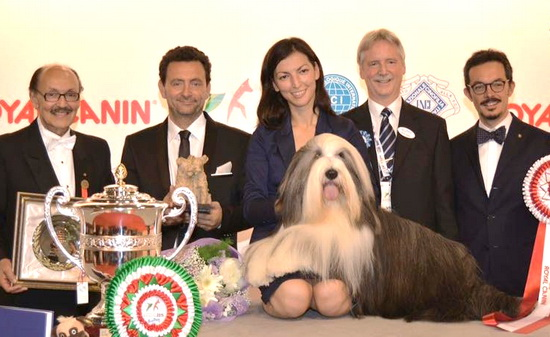 world dog show 2015 milan winner