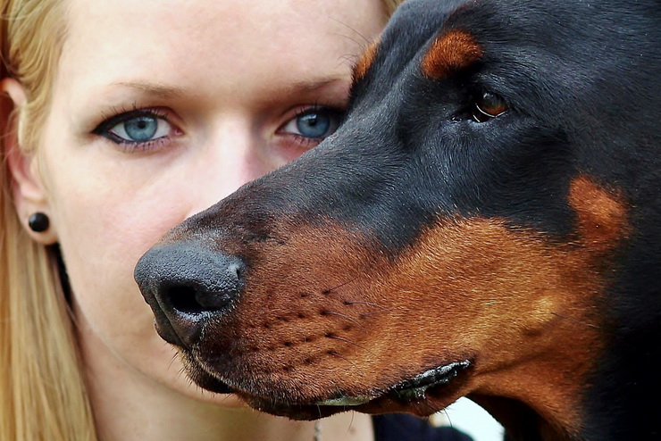 young blonde woman with doberman