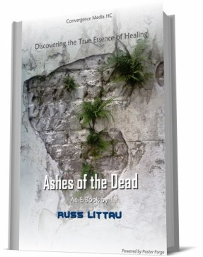 ashes-of-the-dead-book-cover