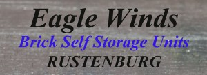 logo Eagle Storage