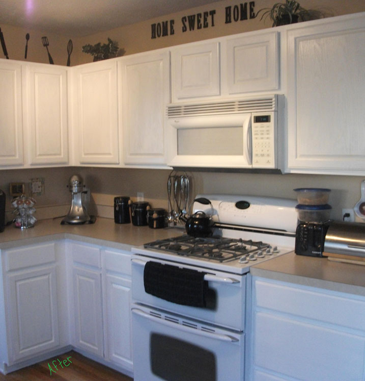 Cabinet Transformations Submitted by Fallon K