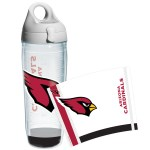 P9_Cardinals(NFL-I-25-ARIZ-WRAD)