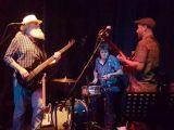 The Blues Freaks – I'll Take the Blame (Big Beard)
