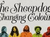 The Sheepdogs – Changing Colours (Warner)