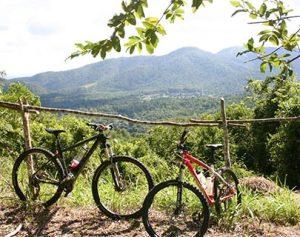 two-bikes