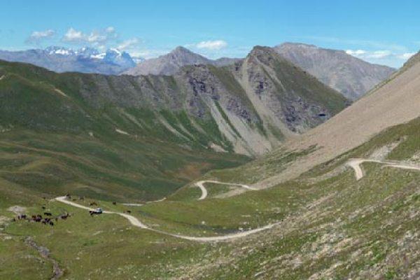 Viajes en bici organizados por los Alpes