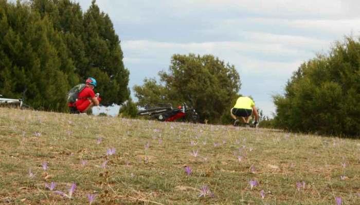 En bici por las Vias Verdes con Rutas Pangea