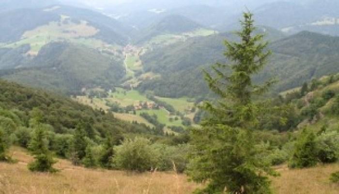 Senderismo Alpes de Baviera