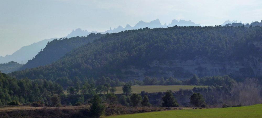 Montserrat en el horizonte