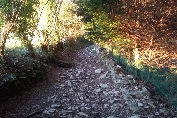 Camino Pagoeta