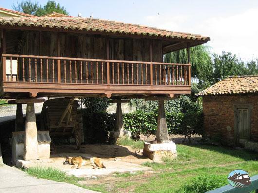Orrio en Oviedo