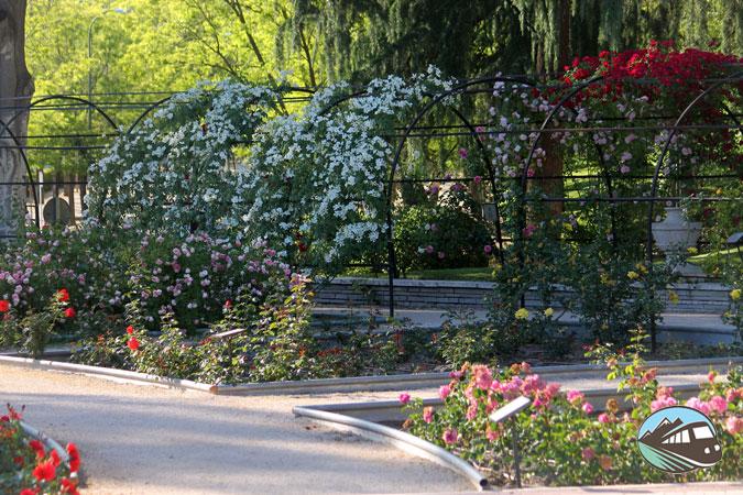 Jardín de la Rosaleda – Madrid