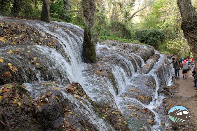 Fresnos Altos - Parque del Monasterio de Piedra