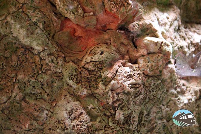 Rocas con forma de cabeza de pato - Las Lagunas de Ruidera