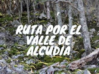 Valle de Alcudia