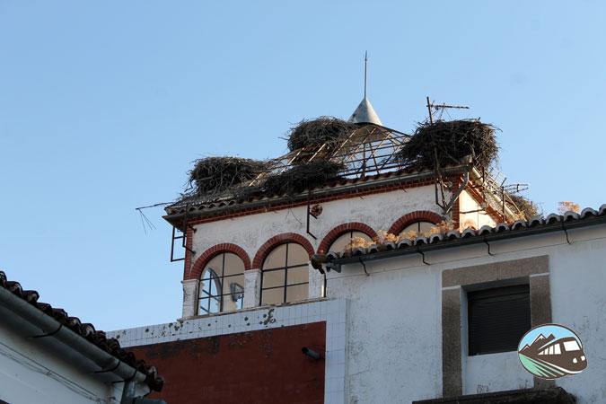 Cigüeña - Malpartida de Cáceres