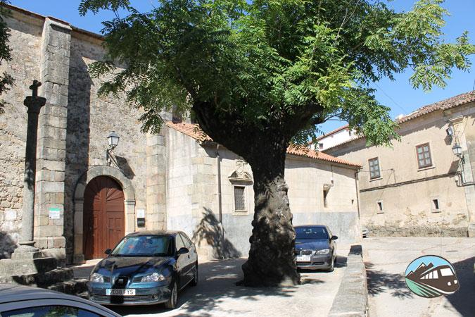 Iglesia de San Martín de Tours - San Martín de Trevejo