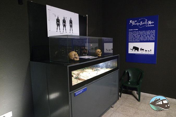 Centro de Interpretación del Paleolítico - El Provencio